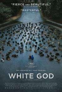 White-God-(2014)